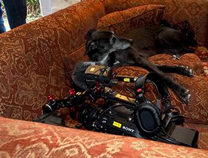 Inky Film Crew